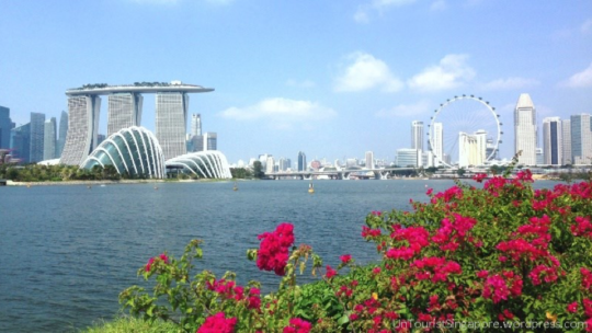 The Gardens in Singapore Will Leave You Wanting More